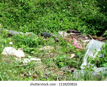 Rambling municipal waste in a beautiful natural environment, in a place not intended for landfill waste is a serious social and environmental problem