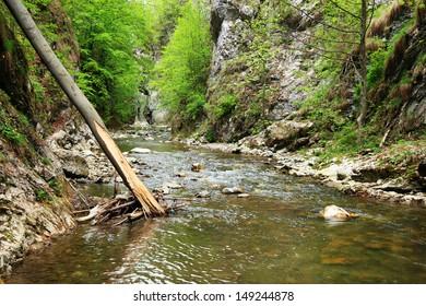 Ramet Gorges in Transylvania, Romania, Europe
