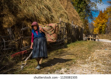 RAMET, ROMANIA - OCTOBER 19, 2017: An old woman carrying hay for livestock in the rural area of Transylvania at autumn