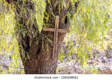 Ramla, Israel, December 07, 2019 : Big wooden cross hanging on a tree on the ruins of a Byzantine church complex on the territory of Emmaus Nicopolis