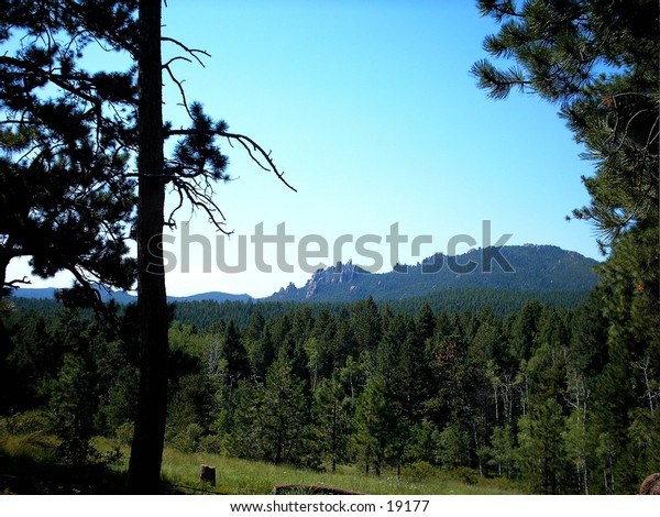 Rampart Range mountains in Colorado, framed by trees