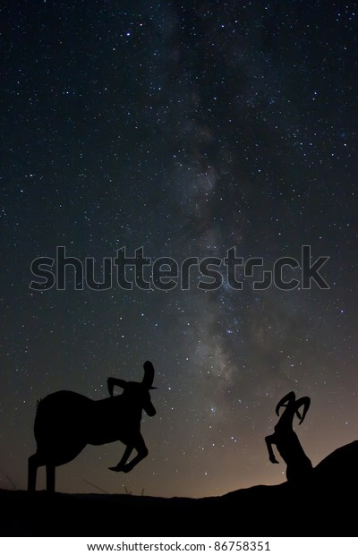 Rams (statues) and the Milky Way.
