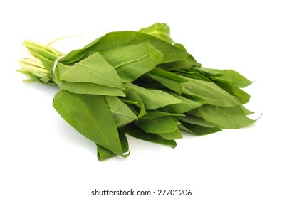 Ramson fresh leaves
