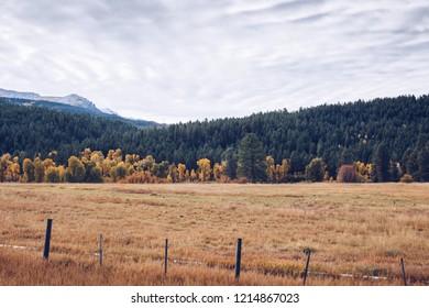 Ranch field in fall in southwestern Colorado