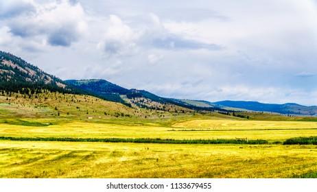 Ranch Land in the Nicola Valley along Highway 5A between Merritt and Kamloops, British Columbia, Canada