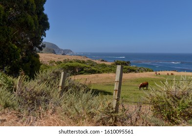 ranch on the ocean cliffs at the Notleys Landing (Big Sur, California)