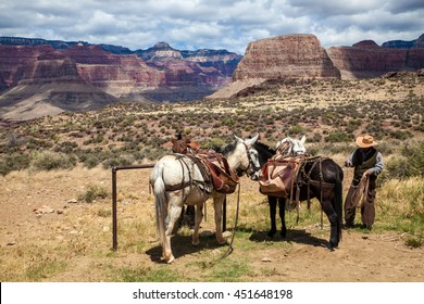 Rancher in Grand Canyon, Arizona, USA