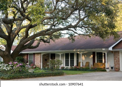 ranch-style home with large live oak tree in front