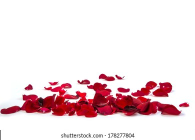 Random rose petals against white background. Great for presentations, forms and ad print.
