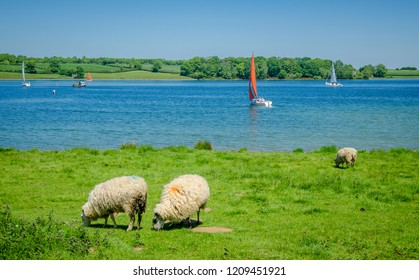 Range of activities from cycling to water sports at Rutland water in Oakham