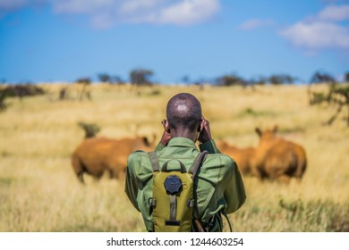 Ranger watching animals in an african savanna park
