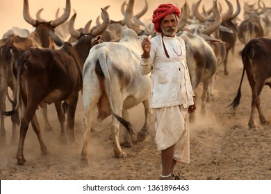 RANN OF KUTCH, INDIA - DECEMBER 8, 2018: Unidentified Rabari herder in a rural village in the district of Kutch, Gujarat. The Kutch region is well known for its tribal life and traditional culture.