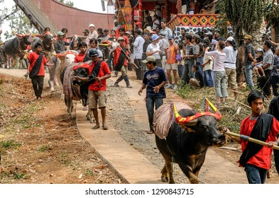 RANTEPAO, TORAJA, SULAWESI, INDONESIA - OCT 20,2009: relatives and friends of the deceased go in procession through the streets of the village during a Toraja funeral  , near Rantepao on 20 oct 2009.