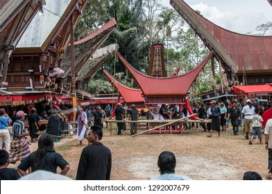 RANTEPAO, TORAJA, SULAWESI, INDONESIA - OCT 20,2009: the sedans with the coffins of the dead are ready for the ritual procession during a funeral Toraja, near Rantepao on October 20, 2009.