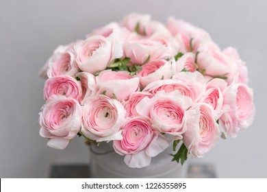 Ranunculus asiaticus or Persian Buttercup. Bunch of pastel pink blossom . Light gray background, metal vase. Wallpaper, flowers texture