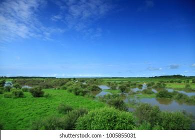 Raohe County, Heilongjiang Province Wusuli River Treasure Island wetland landscape