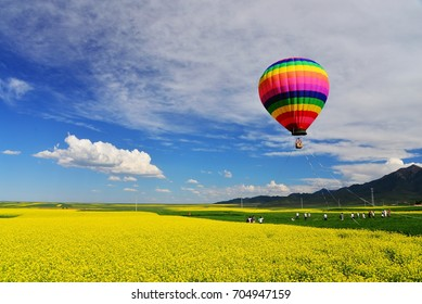 Rape flower field with hot-air balloon in Qinghai,China