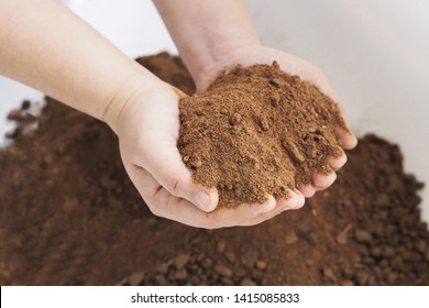 Rapeseed canola meal is showing on hand:an important feed ingredient and the by-product of the oil Process its oils rich in highly saturated vegetable fats,cosmetic production , raw material,