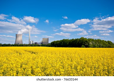 Rapeseed field and power plant under a blue sky.