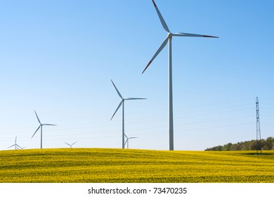 Rapeseed field with wind turbines generating electricity