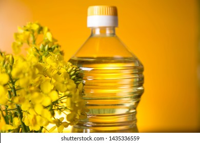 Rapeseed flowers and rapeseed oil in a bottle on the table.