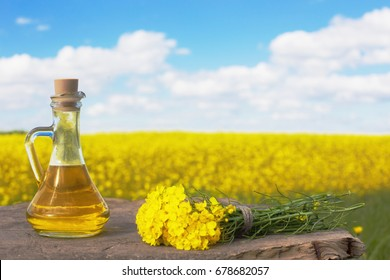 rapeseed oil (canola) on background field and sky