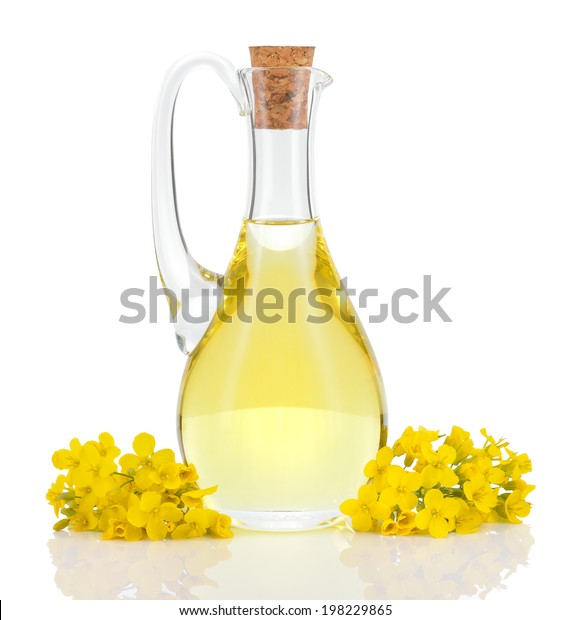 Rapeseed oil in decanter and oilseed rape flowers isolated on white background. Canola oil.
