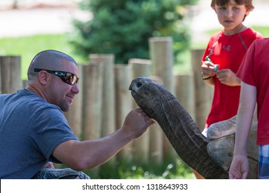 RAPID CITY, SOUTH DAKOTA - June 10, 2014: A family interacts with a Aldabra Tortoise by petting and touching it at the Reptile Gardens in Rapid City, SD on June 10, 2014.