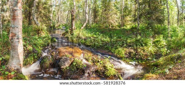 The rapid flow of river water in the forest on the Big Solovetsky Island