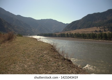 Rapid Katun, carries its turquoise waters through the maasive mountain ranges. The Republic of Gorny Altai, Siberia, Russia.