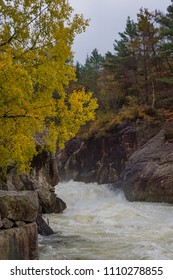 Rapid stream river yellow tree waterfall