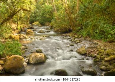 rapids on a small stream in Costa Rica