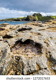 Rare Dinosaur footprint of the sauropod-dominated tracksite from Rubha nam Brathairean, Brothers Point - Isle of Skye, Scotland.