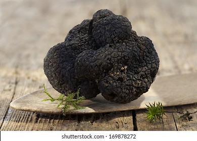 rare and expensive  black truffle on wooden background