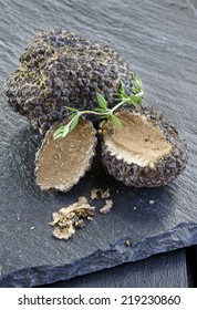 rare and expensive black truffle on a black background