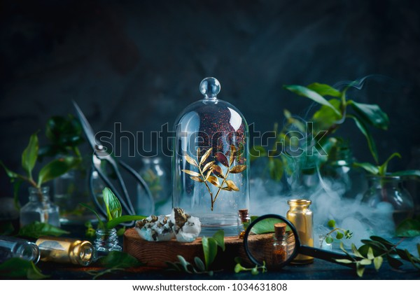 Rare plant under a glass dome. Preserving precious things concept. Botanical still life with copy space.