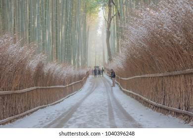 Rare snowfall in Kyoto's famous tourist attraction covered the Arashiyama Bamboo Grove with snow with slightly misty background and a few visitors taking photos of the rare moment.
