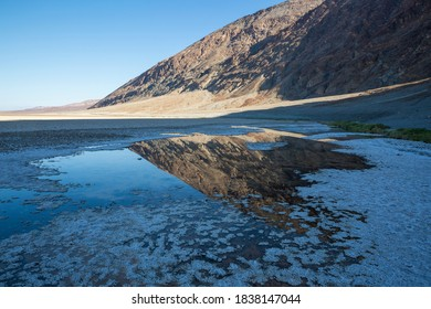 A rare water source in Death Valley National Park at Badwater Basin, the lowest point in North America at -282 feet (California).