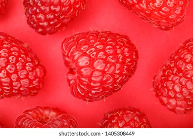 Raspberries, fresh raspberries  on a red background,  minimalistic concept, monochrome, top view. Fruit pattern, flat lay