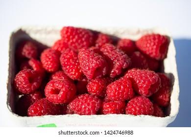 Raspberries on white background, fruits, background