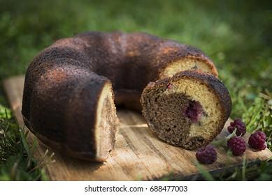 Raspberry Bundt Cake on the grass