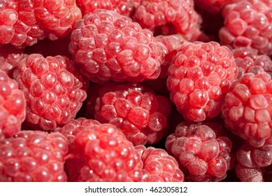 raspberry closeup/ ripe raspberry closeup background/ raspberry background
