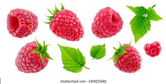 Raspberry collection isolated on white background with clipping path