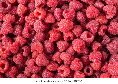 Raspberry. Fresh and sweet organic berries macro. Fruit background.  top view,  horizontal photo