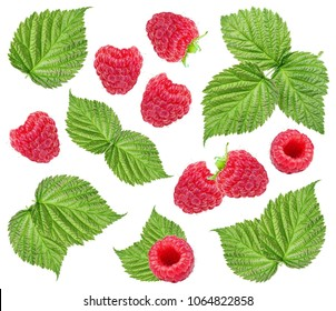 Raspberry and leaves isolated on white background