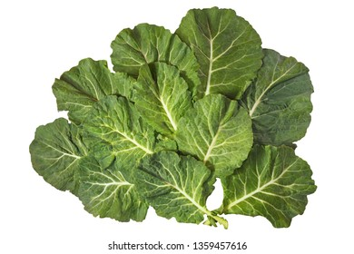 Rastan ( Collard greens, collards ) - popular leafy vegetables in Balkan cuisine. Isolated on white background, flat lay