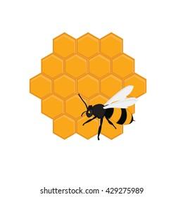 Raster illustration honey bee on honeycomb. Bee on honey cells. Honey comb