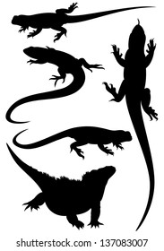 raster - lizards fine silhouettes - detailed black outlines over white (vector version is available in my portfolio)