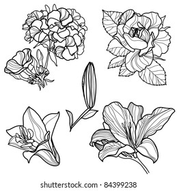 "RASTER Set of floral design elements (from my big ""Flower-set collection"")"