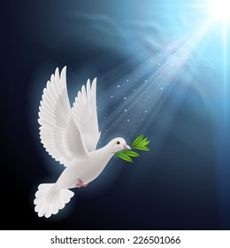 Raster version. Dove of peace flying with a green twig after flood on a dark background